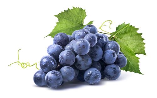 Grape - Uva em inglês